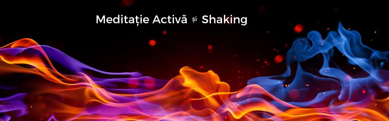 Meditație activă și Shaking