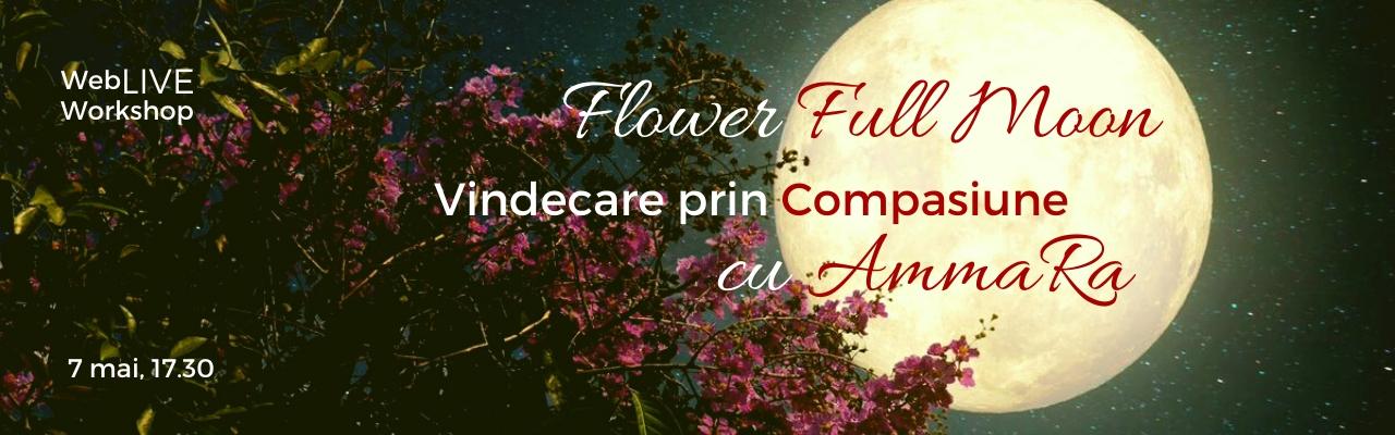 Full Flower Moon - Vindecare prin Compasiune